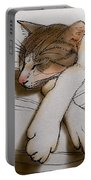 Purrfect Pose Portable Battery Charger