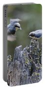 Pygmy Nuthatch In Flight Portable Battery Charger