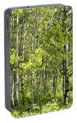 Quaking Aspens 2 Portable Battery Charger