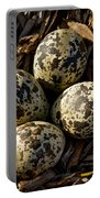 Quartet Of Killdeer Eggs By Jean Noren Portable Battery Charger