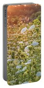 Queen Anne At Sunset Portable Battery Charger