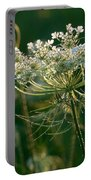 Queen Anne's Lace In Green Horizontal Portable Battery Charger
