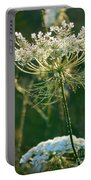 Queen Anne's Lace In Green Vertical Portable Battery Charger