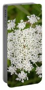 Queen Anne's Lace No 2 Portable Battery Charger