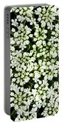 Queen Anne's Lace Patterns Portable Battery Charger