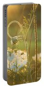 Queen Anne's Lace Sunset Portable Battery Charger