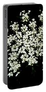 Queen Anne's Lace Wildflower - Daucus Carota Portable Battery Charger