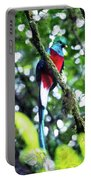 Quetzal In Monteverde Portable Battery Charger