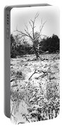Quiet Winter Black And White Portable Battery Charger