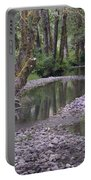 Quinault Rain Forest 3147 Portable Battery Charger