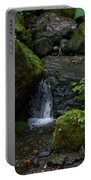 Quinault Washington Rain Forest Portable Battery Charger
