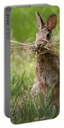 Rabbit Collector Square Portable Battery Charger