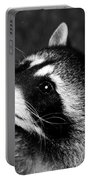 Raccoon Looking Portable Battery Charger