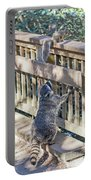 Raccoon Shenanigans Portable Battery Charger