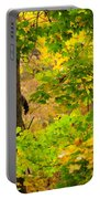Racoon In Fall Trees Portable Battery Charger