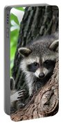 Racoons In Tree Portable Battery Charger