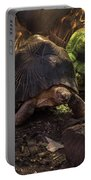 Radiated Tortoise Portable Battery Charger