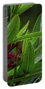 Rain Coated Blades Of Grass And  Deep Pink Petals Portable Battery Charger