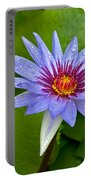 Rain Drenched Blue Lotus In Grand Cayman Portable Battery Charger