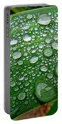 Rain Drops Portable Battery Charger