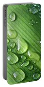 Rain Drops On A Flax Leaf Portable Battery Charger
