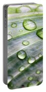 Rain Drops On A Leaf Portable Battery Charger