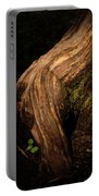 Rain Forest Light Portable Battery Charger