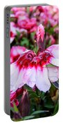 Rain Soaked Dianthus Portable Battery Charger