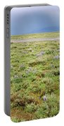 Rainbow And Lupine, Grand Teton Nm, Wyoming Portable Battery Charger