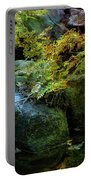 Rainbow Autumn Ferns At Pickle Creek 6303 H_3 Portable Battery Charger