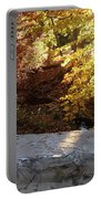 Rainbow Brook  Portable Battery Charger