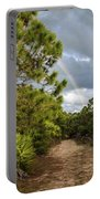 Rainbow Path Portable Battery Charger