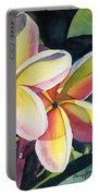 Rainbow Plumeria Portable Battery Charger