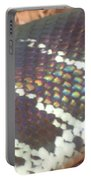 Rainbow Scales Portable Battery Charger