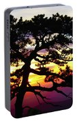 Rainbow Sunrise Tree 03 Portable Battery Charger