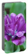Raindrops Clinging To The Purple Petals Of A Tulip Portable Battery Charger