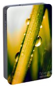 Raindrops On A Blade Of Grass Portable Battery Charger