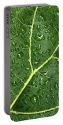 Raindrops On Fiddle Leaf Portable Battery Charger