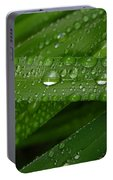 Raindrops On Green Leaves Portable Battery Charger