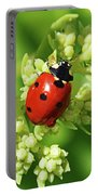 Raindrops On Ladybug Portable Battery Charger