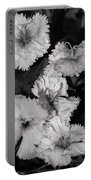 Raindrops On Petals Monochrome Portable Battery Charger