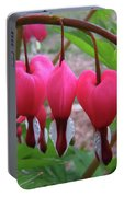 Raindrops On Pink Bleeding Hearts Portable Battery Charger
