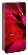 Raindrops On Red Poinsettia Portable Battery Charger