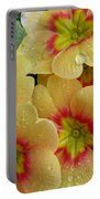 Raindrops On Yellow Flowers Portable Battery Charger