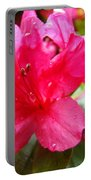 Raindrops Red Azaleas Art Prints Water Drops Azalea Flowers Portable Battery Charger