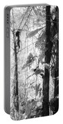 Rainforest Abstract Portable Battery Charger