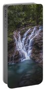 Rainforest Autumn Glow Portable Battery Charger