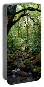 Rainforest Stream Portable Battery Charger