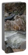 Rainy Rocky Rapids Portable Battery Charger