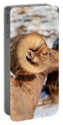 Ram Drool Portable Battery Charger